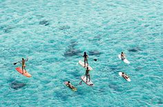stand up paddle board in Oahu, HI - Hawaiian WaterSports, Wet Feet, and Surf n Sea offer stand-up paddleboard rentals and lessons.