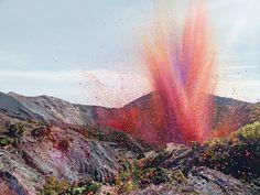 Un instant magique ! Des pétales de fleurs rendent les paysages du Costa Rica féeriques ...