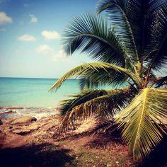 Dans le sud de la Martinique, à l'ouest de la commune de Sainte-Luce, existe un sentier qui vous permet de parcourir le littoral à la découverte d'une dizaine de petites plages.