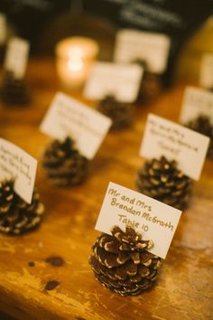 New England in the fall is sort of as good as it gets. Unless, of course, you add a wedding by Zac Wolf into the mix. With a rich, purple palette and plenty of rustic details (looking at you, pine . wedding centerpieces Rustic Fall New England Wedding Gazebo Wedding Decorations, Fall Wedding Centerpieces, Wedding Themes, Wedding Hacks, Wedding Venues, Centerpiece Ideas, Centerpiece Flowers, Decor Wedding, Wedding Photos