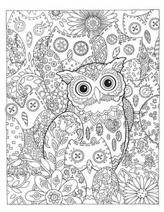 Creative Haven Owls Coloring Book (Adult Coloring) Owl Coloring Pages, Adult Coloring Book Pages, Coloring Sheets, Coloring Books, Colorful Pictures, Illustration, Painting, Drawings, Patterns