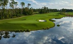 """Nestled on over 482 pristine acres in Bonnet Creek and winding through a picturesque wetlands preserve, our neighboring Waldorf Astoria® Golf Club features one of Orlando's most acclaimed and challenging courses. Discover """"old school"""" bunkers carved out of the land's natural contours, or drive along the fairways lined with majestic stands of pine and cypress trees. Artfully enhanced by natural elements and mindful of the environment, this incomparable Orlando golf course is both tenacious…"""
