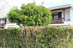 Oportunidad en Sotogrande #adosada #sevendecasa #familia #golf #gibraltar #gamming