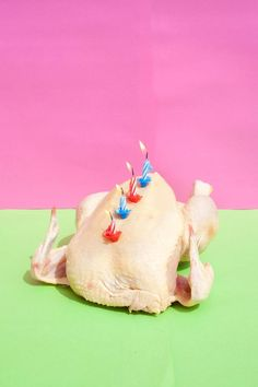 art direction | birthday turkey food styling still life photography