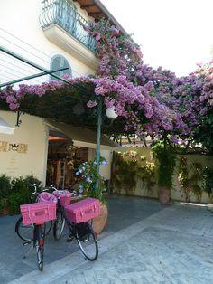 Forte Dei Marmi  pink carry cases