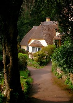 Thatched cottage in Selworthy, Somerset, England (by Canis Major).