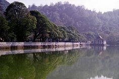 WangWang - Voyage au Sri Lanka