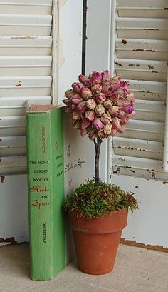 Dried Pink Rosebud Topiary  Shabby Cottage. $18.00, via Etsy.