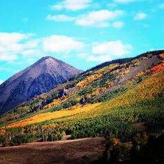 Gothic Mountain high above the vibrant Aspen groves. A leaf - peepers heaven right now in #crestedbutte #cbcolors Photo: Megan Collins