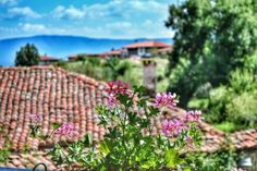 Coffee break with a view, Jeravna, Bulgaria. A lovely village in the mountains. Coffee Break, Bulgaria, Magic, In This Moment, Mountains, Plants, Photography, Photograph, Photography Business