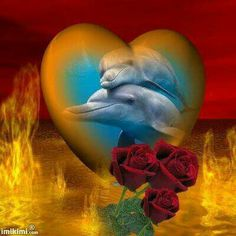 Love my dolphins Dolphin Images, Dolphin Photos, Dolphin Art, Orca Art, Beautiful Love Images, Beautiful Fantasy Art, Orcas, Water Animals, Animals And Pets