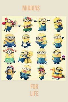 Crazy for minions