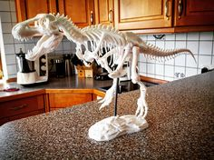 3D Printed T-Rex by Christian Schmidt