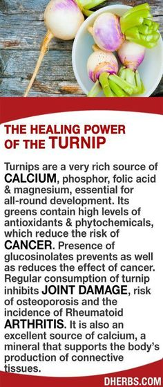 Turnips are a very rich source of calcium, phosphor, folic acid & magnesium. Its greens contain high levels of antioxidants & phytochemicals, which reduce the risk of cancer. Presence of glucosinolates prevents as well as reduces the effect of cancer. Regular consumption of turnip inhibits joint damage, risk of osteoporosis and the incidence of Rheumatoid Arthritis. It is also an excellent source of calcium, a mineral that supports the body's production of connective tissues. #dherbs…