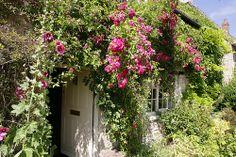 The Cottage - Rutland