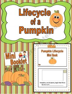 Lifecycle of a Pumpkin!{Booklet} product from Engaging-Lessons on TeachersNotebook.com