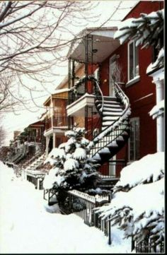 Winter in Montreal: Ave Rosemont. Quebec Montreal, Montreal Ville, O Canada, Canada Travel, Snow Scenes, Winter Scenes, Winter Snow, Winter Time, Westminster