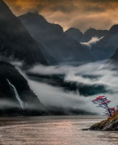 The Milford Sound ,New Zealand