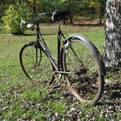 My Mawmaw's Schwinn Bicycle, Vehicles, Photos, Photography, Bike, Pictures, Photograph, Bicycle Kick, Fotografie
