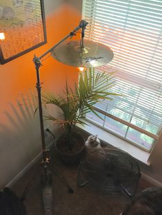 Finished my Cymbal Stand Lamp Project! Beautiful Houses Interior, Beautiful Homes, Music Furniture, Music Studio Room, Music Rooms, Drum Room, Farmhouse Lamps, Creation Deco, Ideias Diy
