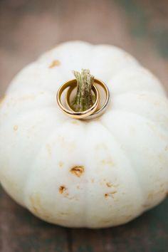 Fall Wedding, Pumpkin, Wedding Photography, Vegetables, Instagram, Autumn, Food, Photography, Hello Autumn
