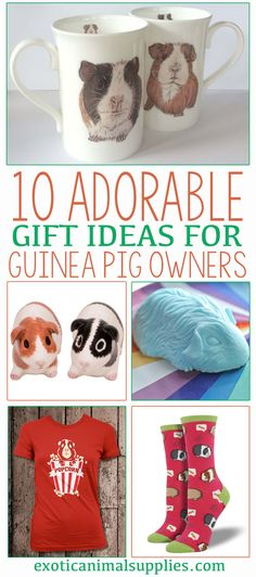 Adorable and unique gift ideas for guinea pig owners and cavy lovers. So many cute options. I love that popcorn t-shirt.