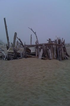 Oregon Coast... Spent many days building driftwood forts just like this!!!