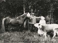 Finnish grandparents, Finnhorse and Eastern Finland cow . Old Pictures, Old Photos, History Of Finland, Tom Of Finland, O Holy Night, My Land, Life Photo, Ancient History, Art Images