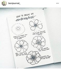How to draw beautiful flower doodles in your bullet journal! These easy flower drawing tutorials will have you doodling flower patterns all over your bujo. Easy Flower Drawings, Flower Drawing Tutorials, Easy Drawings, Drawing Ideas, Drawing Tips, Flower Drawing Tutorial Step By Step, How To Draw Flowers Step By Step, Flower Step By Step, Drawing Art