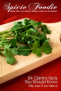 24 Cilantro Facts 24 Cilantro Facts You Need To Know by @SpicieFoodie | #cilantro #coriander #foodinfo #foodfacts