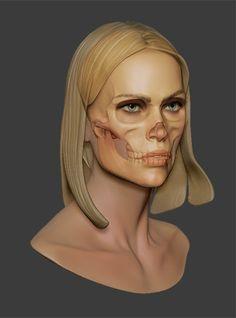 Female Skull Study Illustration showcase: http://skullappreciationsociety.com/female-skull-study/ via @Skull_Society