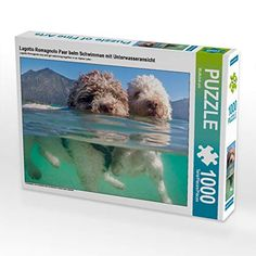 Coco and Mascarpone swimming cheek to cheek in green, clear lake in the Bavarian Alps. Must have for all Lagotto and dog lovers!