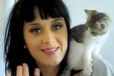 That's Purrfect: Cats And Celebrities