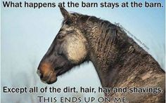 What happens at the #barn...