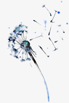 watercolor dandelion tattoo - This would be cute behind the ankle curve toward i. - watercolor dandelion tattoo – This would be cute behind the ankle curve toward it sorta on the si - Watercolor Dandelion Tattoo, Watercolor Flowers, Watercolor Paintings, Dandelion Tattoos, Dandelion Tattoo Design, Dandelion Painting, Dandelion Flower, Dandelion Drawing, Dandelion Nursery