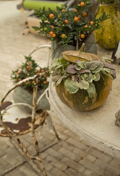 Image by Terrain Fall Canvas, Chic Halloween, Fall Planters, So Creative, Anne Of Green Gables, Booth Design, Autumnal, Hallows Eve, Fun Ideas