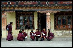 waiting the bus Paro Panoramio - Photos by Richard Weil Paros, Bhutan, Himalayan, Travel Guides, Waiting, Beautiful, Himalayan Cat