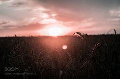 sunrise by kos95 #nature #mothernature #travel #traveling #vacation #visiting #trip #holiday #tourism #tourist #photooftheday #amazing #picoftheday