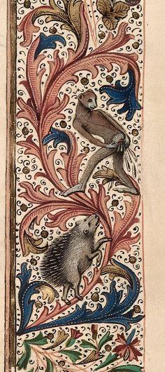 Des enluminures étranges au Moyen Age marginalia enluminure etrange moyen age 29 311x700 peinture 2 histoire design bonus art