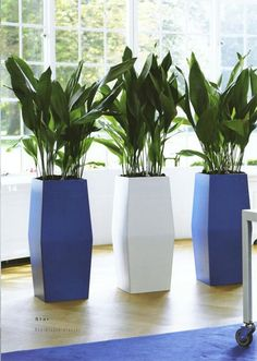 Planter in your corporate colours! by www.greendesign.com.au
