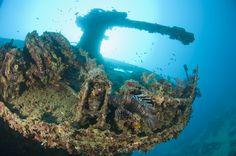 La Thistlegorm era una nave mercantile britannica varata il 5 aprile del 1940 e affondata il 5 ottobre 1941 nel Mar Rosso, nei pressi della barriera corallina di Sha'ab Alì, nel Golfo di Suez, Sinai occidentale. Fu solo nel 1996, grazie ad uno skipper israeliano, che il relitto divenne meta ambita da molti subacquei vista la profondità di 31 metri circa a cui giace.