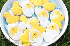 Chicks and Eggs Sugar Cookies