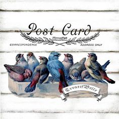 Il sagit dune téléchargement numérique bleu oiseaux carte postale A4 grande taille    Téléchargement numérique en 300dpi haute résolution JPG et PNG