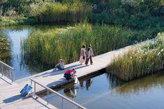 Galería de Paisaje y Arquitectura: Martin Luther King, un parque ecológico integral y conector de barrios - 15
