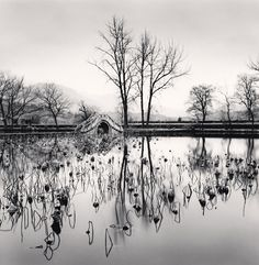 Lake Bridge, Hongkun, Anhui, China, 2008 by Michael Kenna