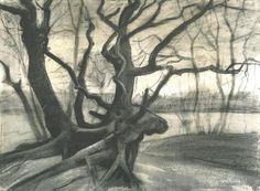Pen and Ink with Watercolor Wash | 1882 Study of a Tree pencil, ink, black chalk & watercolour