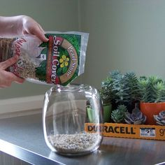use stones to create a drainage layer for your terrarium