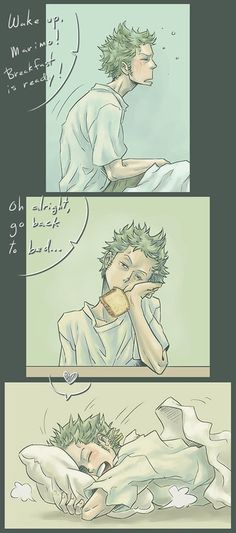 A day in the daily life of Zoro