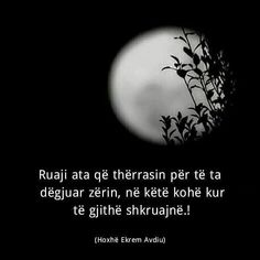 Cute Love Quotes, Amazing Nature, Just Love, Islam, Life Quotes, Albania, Besties, Fitness, Recipies