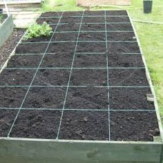 Raised vegetable garden Pinner says: I have been doing this method of gardening for 4 years now. It works really well for me!